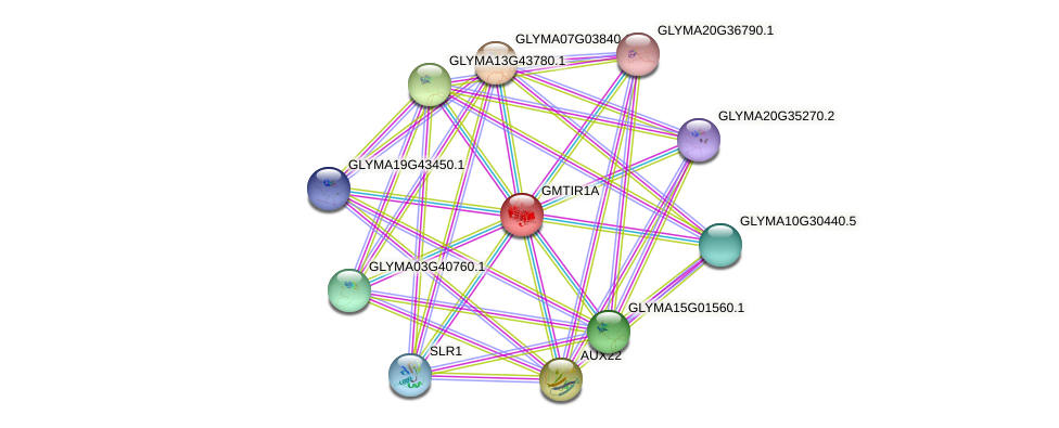 GLYMA02G17170.1 protein (Glycine max) - STRING interaction network