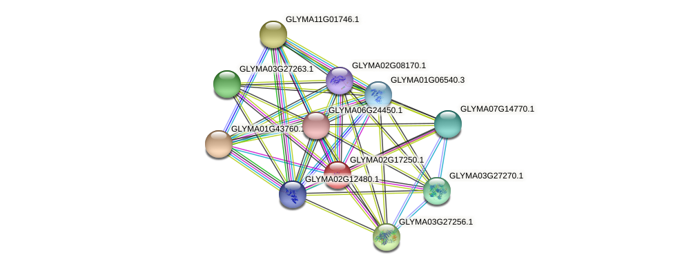 GLYMA02G17250.1 protein (Glycine max) - STRING interaction network