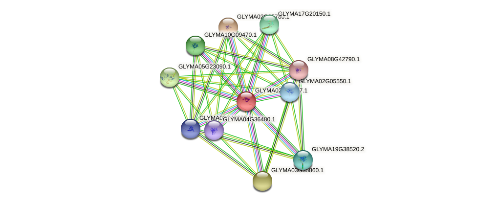 GLYMA02G19917.1 protein (Glycine max) - STRING interaction network