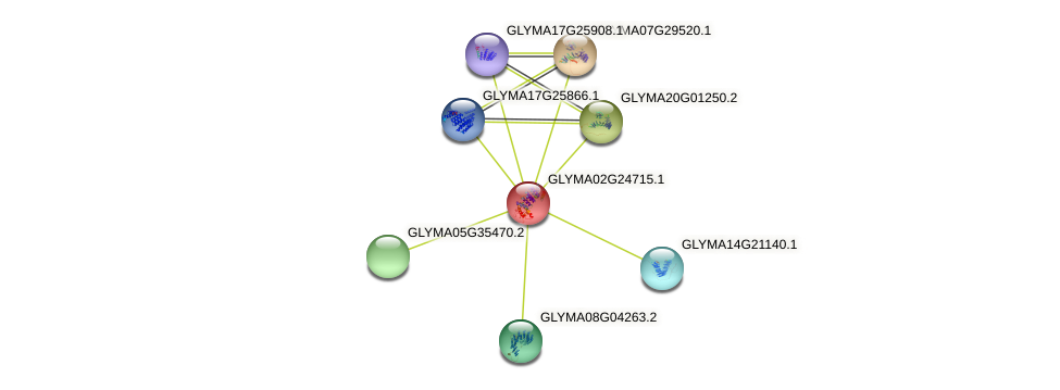 GLYMA02G24715.1 protein (Glycine max) - STRING interaction network