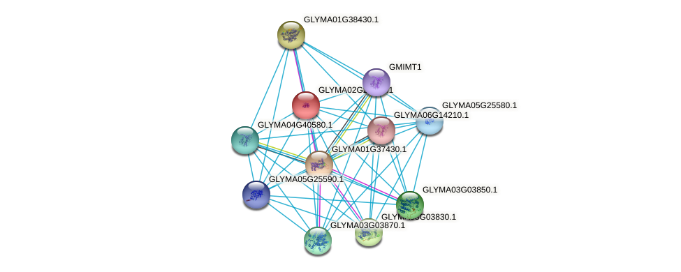 GLYMA02G28880.1 protein (Glycine max) - STRING interaction network