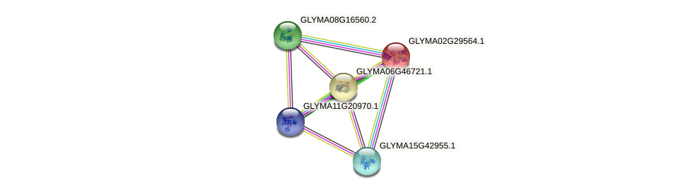 GLYMA02G29564.1 protein (Glycine max) - STRING interaction network
