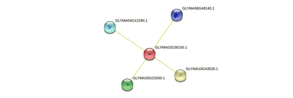 GLYMA02G36150.1 protein (Glycine max) - STRING interaction network