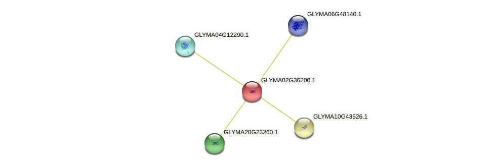 GLYMA02G36200.1 protein (Glycine max) - STRING interaction network