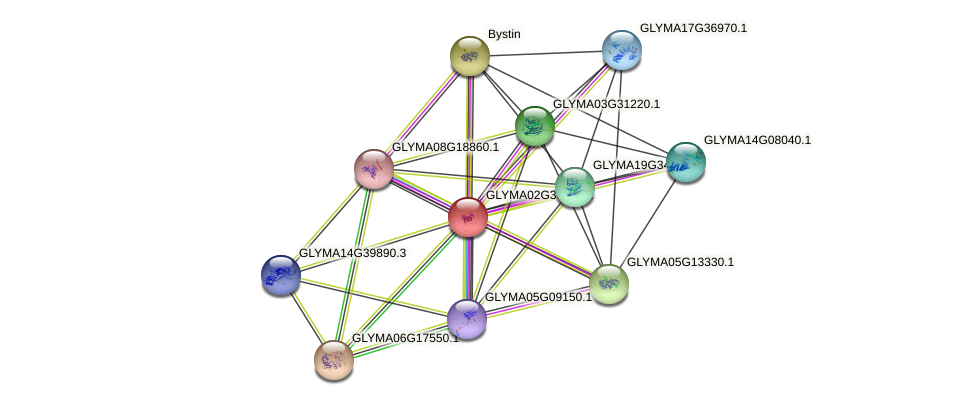 GLYMA02G36350.1 protein (Glycine max) - STRING interaction network