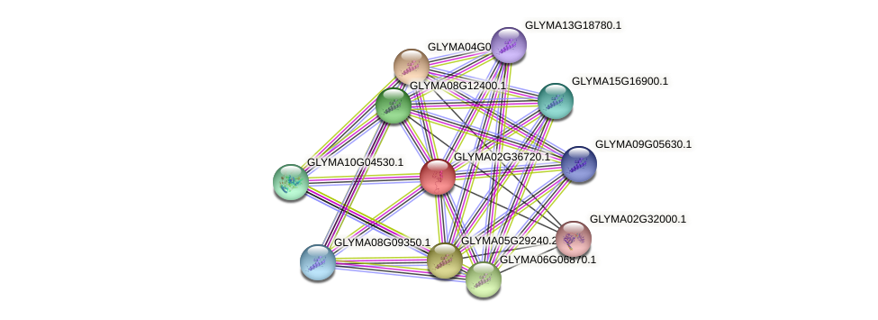 GLYMA02G36720.1 protein (Glycine max) - STRING interaction network