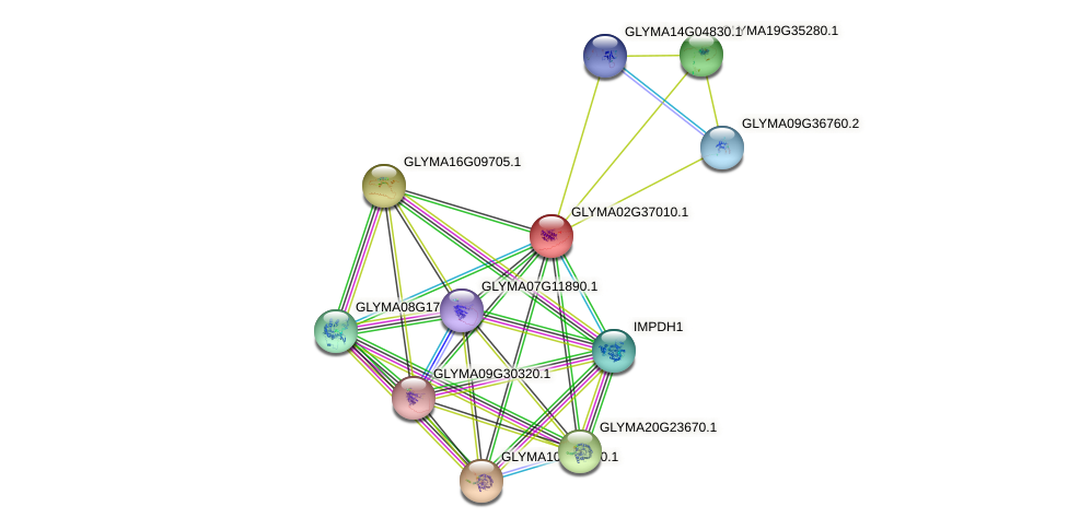 GLYMA02G37010.1 protein (Glycine max) - STRING interaction network