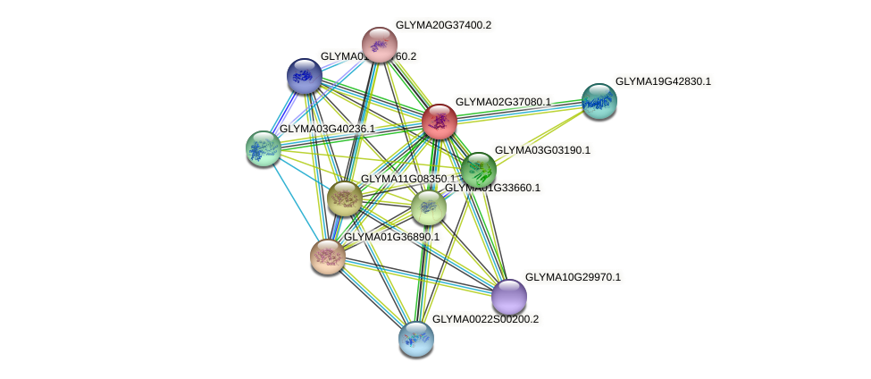GLYMA02G37080.1 protein (Glycine max) - STRING interaction network