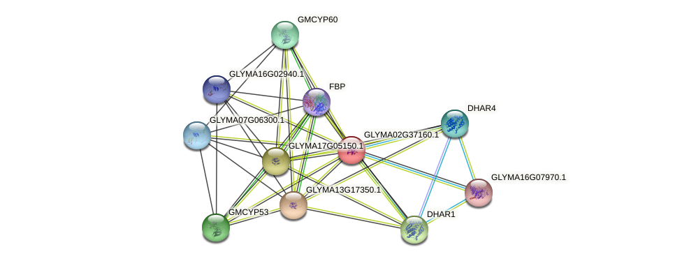 GLYMA02G37160.1 protein (Glycine max) - STRING interaction network