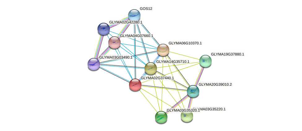 GLYMA02G37440.1 protein (Glycine max) - STRING interaction network