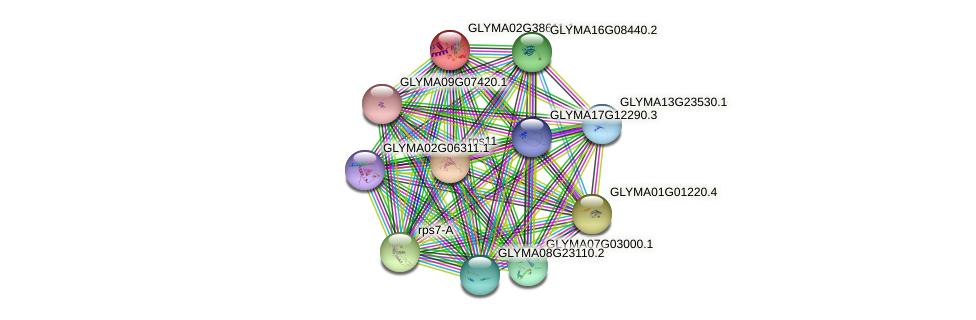 GLYMA02G38611.1 protein (Glycine max) - STRING interaction network