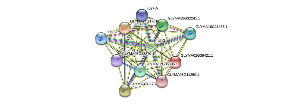 GLYMA02G39421.1 protein (Glycine max) - STRING interaction network