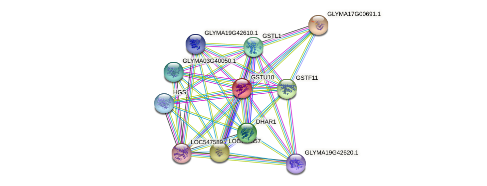 GSTU10 protein (Glycine max) - STRING interaction network