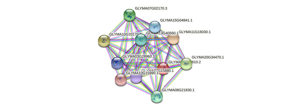 GLYMA02G41610.2 protein (Glycine max) - STRING interaction network