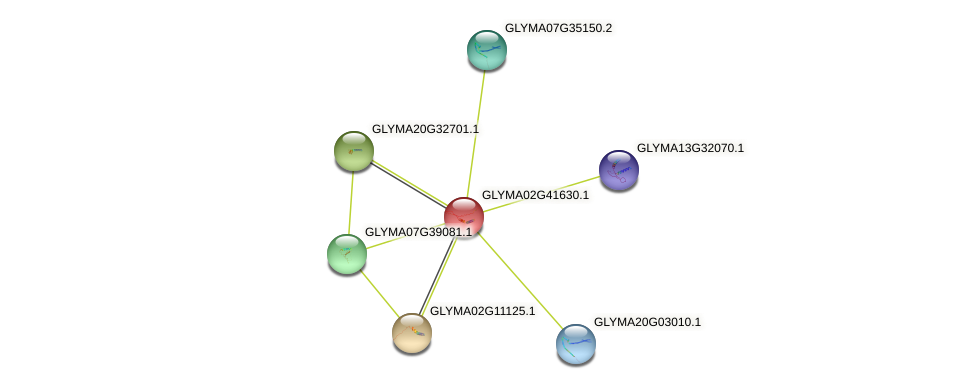 GLYMA02G41630.1 protein (Glycine max) - STRING interaction network