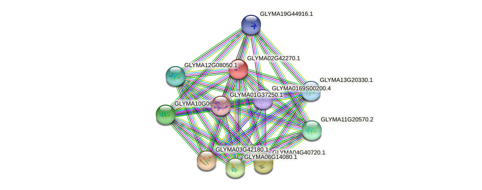 GLYMA02G42270.1 protein (Glycine max) - STRING interaction network