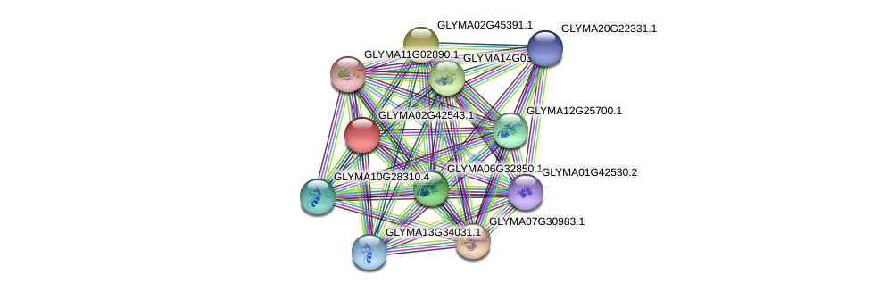 GLYMA02G42543.1 protein (Glycine max) - STRING interaction network