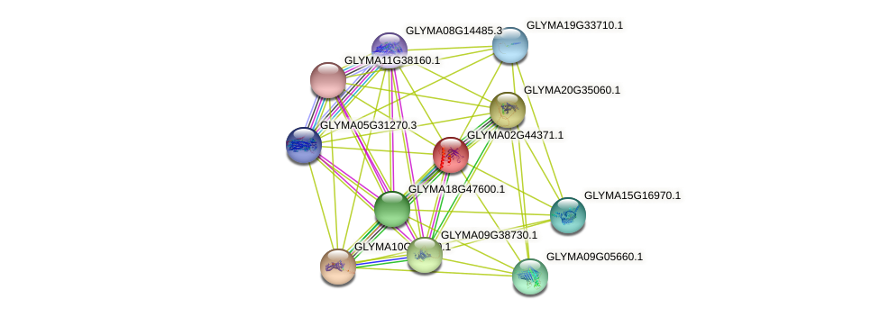 GLYMA02G44371.1 protein (Glycine max) - STRING interaction network