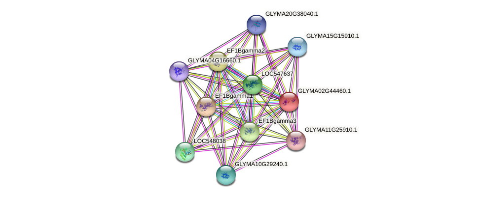 GLYMA02G44460.1 protein (Glycine max) - STRING interaction network