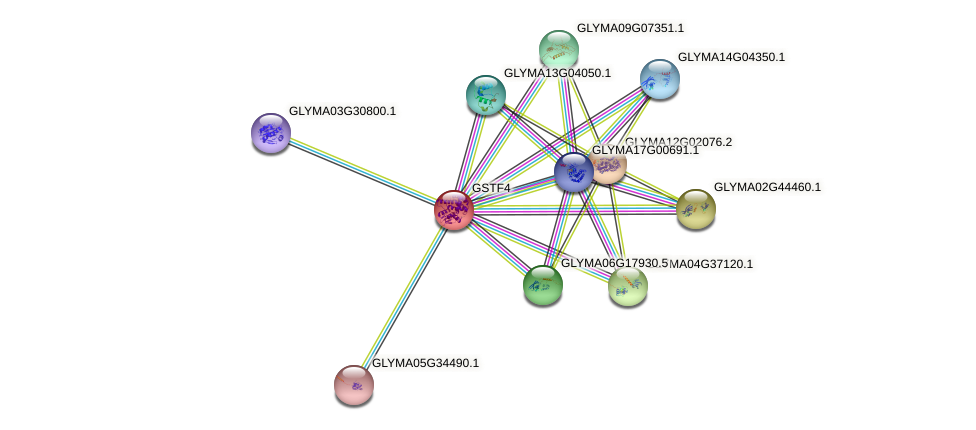 GSTF4 protein (Glycine max) - STRING interaction network