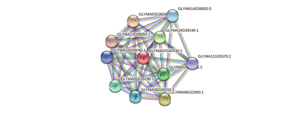 GLYMA02G45430.1 protein (Glycine max) - STRING interaction network