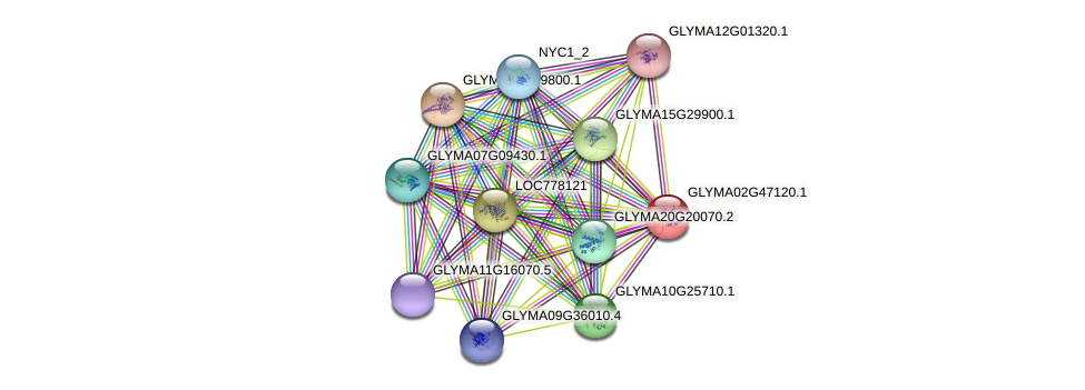 GLYMA02G47120.1 protein (Glycine max) - STRING interaction network