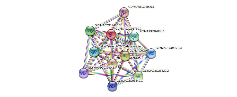 GLYMA03G01730.2 protein (Glycine max) - STRING interaction network