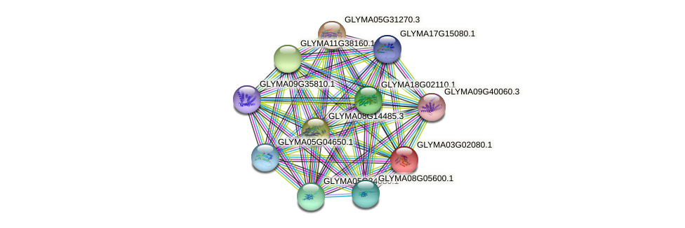 GLYMA03G02080.1 protein (Glycine max) - STRING interaction network
