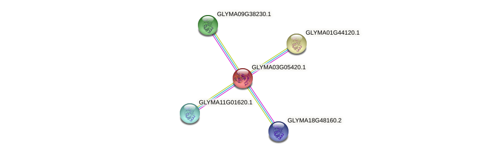 GLYMA03G05420.1 protein (Glycine max) - STRING interaction network