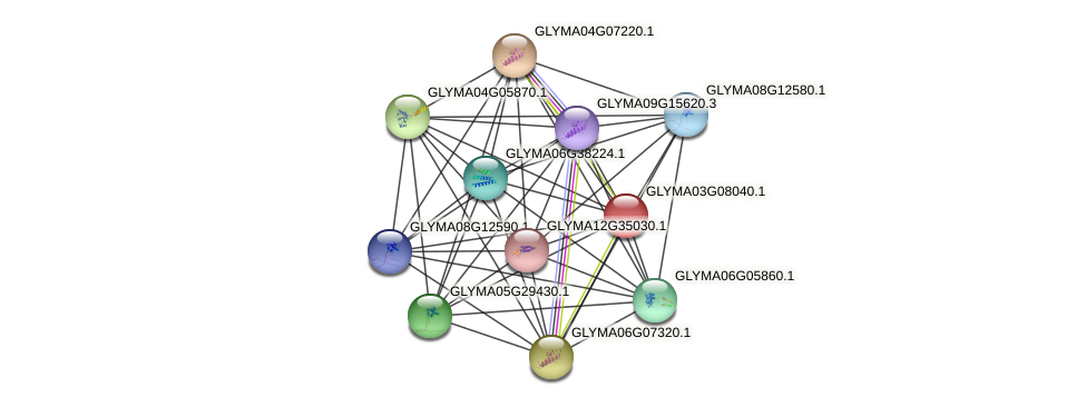GLYMA03G08040.1 protein (Glycine max) - STRING interaction network