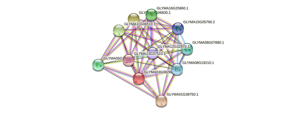 GLYMA03G08280.1 protein (Glycine max) - STRING interaction network