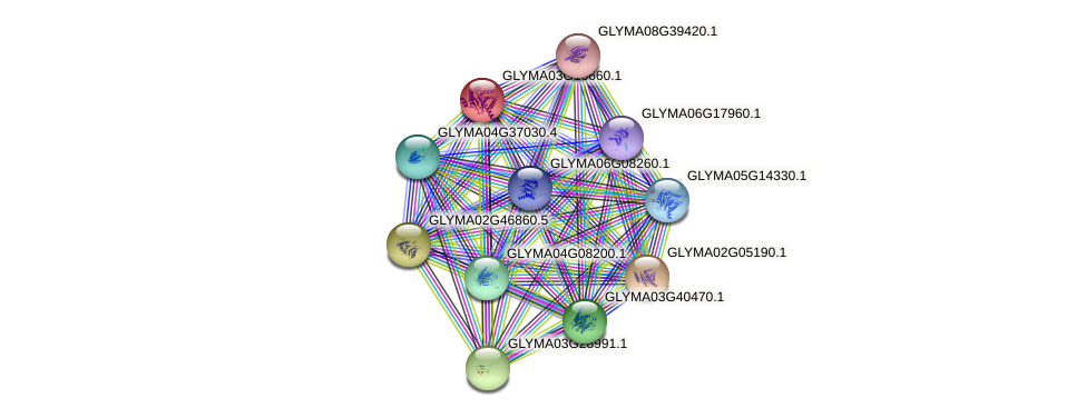 GLYMA03G16660.1 protein (Glycine max) - STRING interaction network