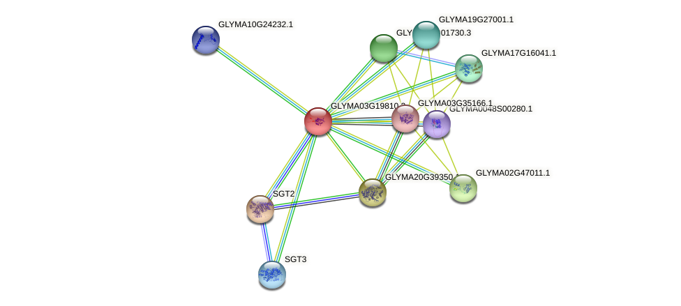 GLYMA03G19810.1 protein (Glycine max) - STRING interaction network
