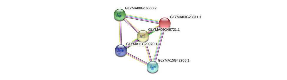 GLYMA03G23811.1 protein (Glycine max) - STRING interaction network