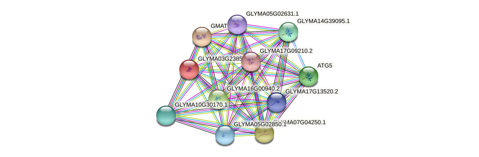 GLYMA03G23850.2 protein (Glycine max) - STRING interaction network