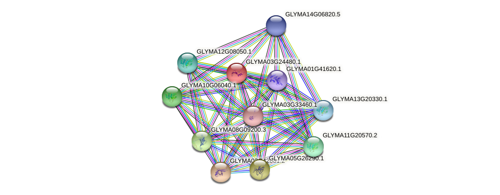GLYMA03G24480.1 protein (Glycine max) - STRING interaction network