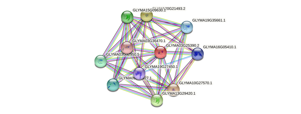GLYMA03G25390.2 protein (Glycine max) - STRING interaction network