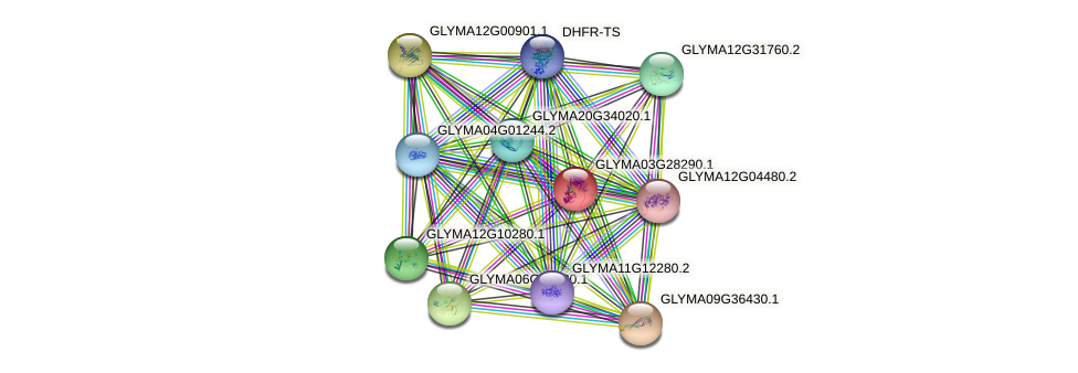 GLYMA03G28290.1 protein (Glycine max) - STRING interaction network