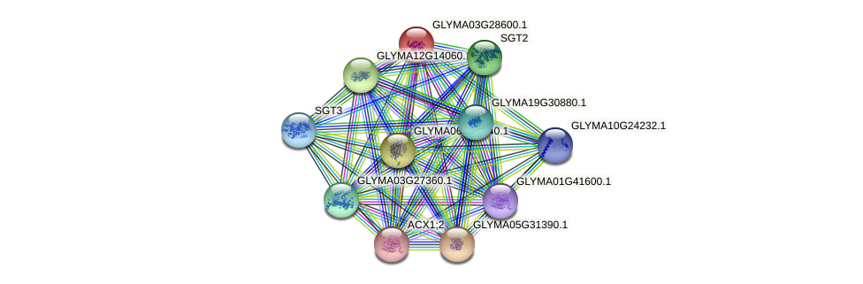 GLYMA03G28600.1 protein (Glycine max) - STRING interaction network