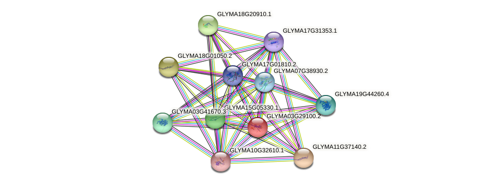 GLYMA03G29100.2 protein (Glycine max) - STRING interaction network
