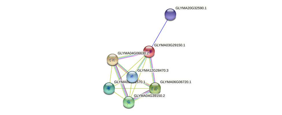 GLYMA03G29150.1 protein (Glycine max) - STRING interaction network