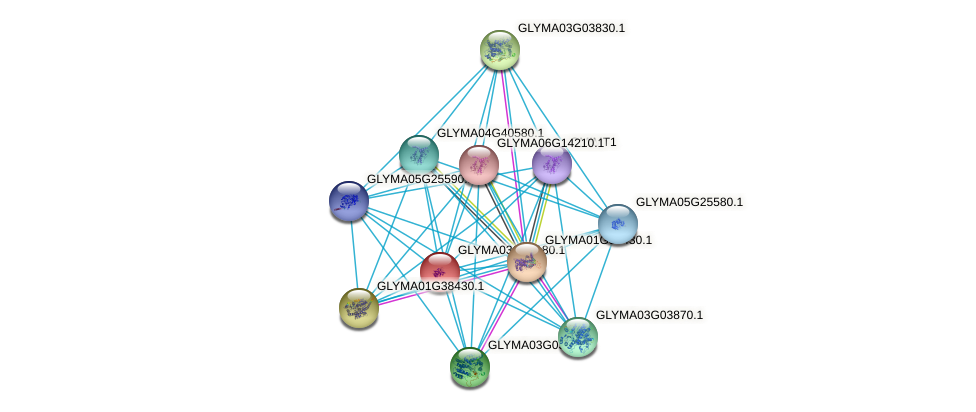 GLYMA03G30180.1 protein (Glycine max) - STRING interaction network