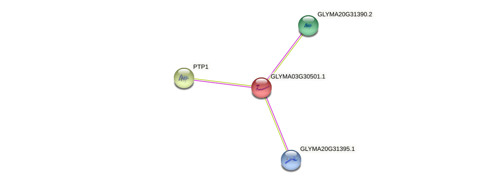 GLYMA03G30501.1 protein (Glycine max) - STRING interaction network
