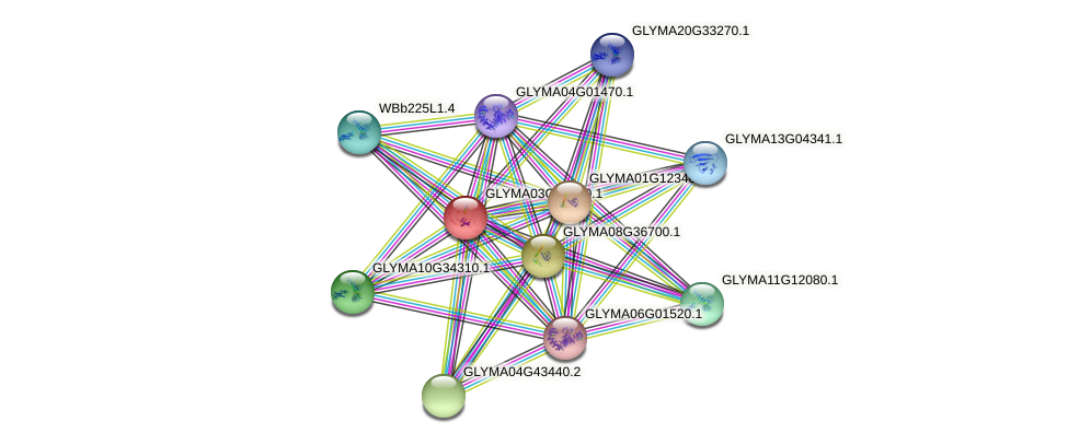 GLYMA03G32910.1 protein (Glycine max) - STRING interaction network