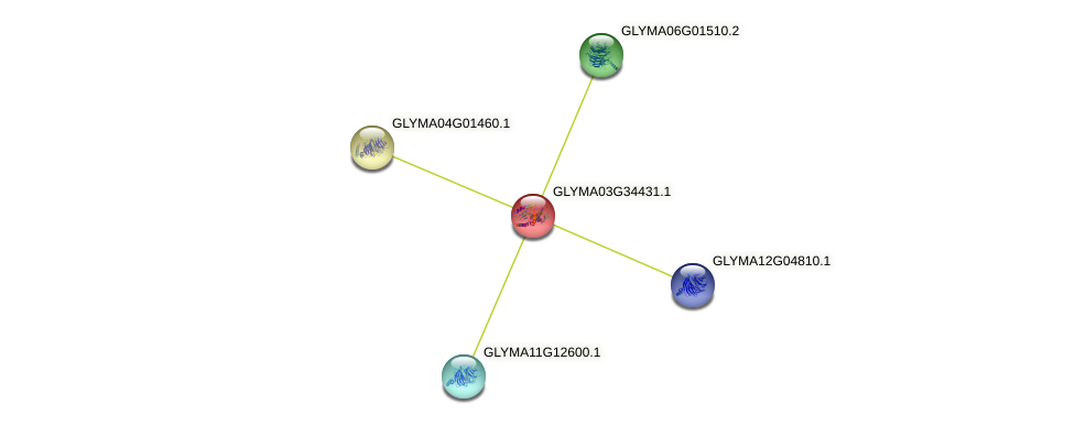 GLYMA03G34431.1 protein (Glycine max) - STRING interaction network