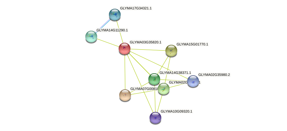 GLYMA03G35820.1 protein (Glycine max) - STRING interaction network