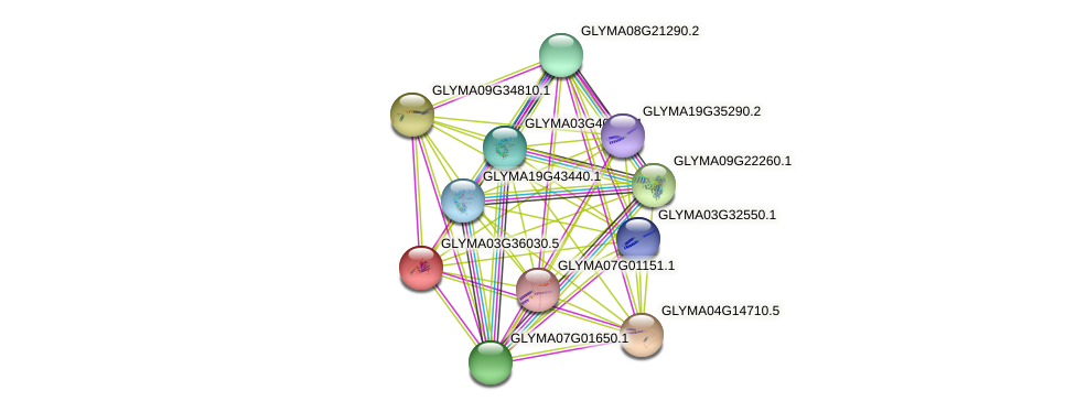 GLYMA03G36030.3 protein (Glycine max) - STRING interaction network