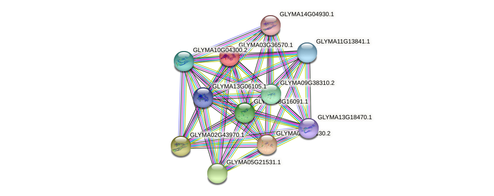 GLYMA03G36570.1 protein (Glycine max) - STRING interaction network
