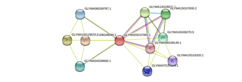 GLYMA03G37950.1 protein (Glycine max) - STRING interaction network