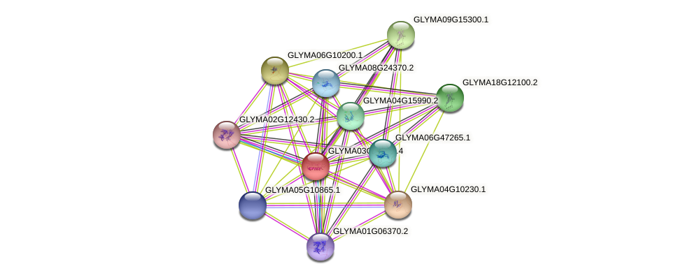 GLYMA03G42290.3 protein (Glycine max) - STRING interaction network